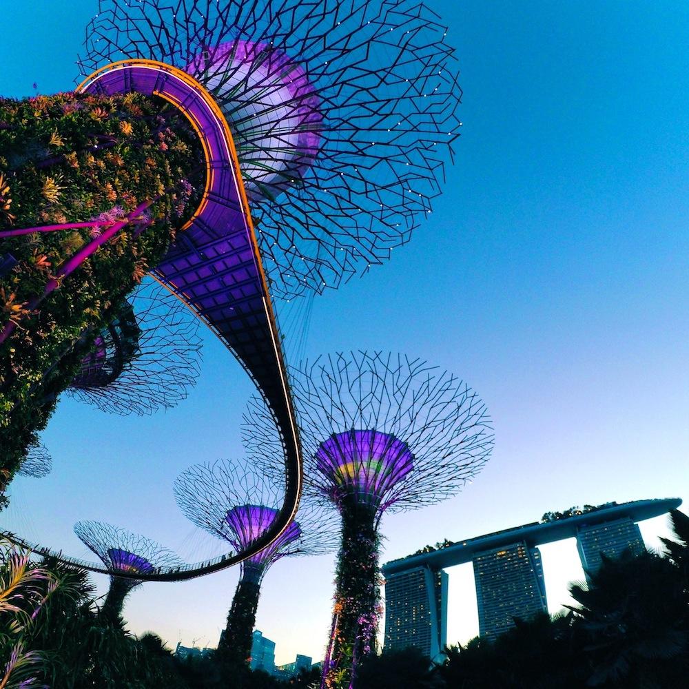 Singapore Destination Banner