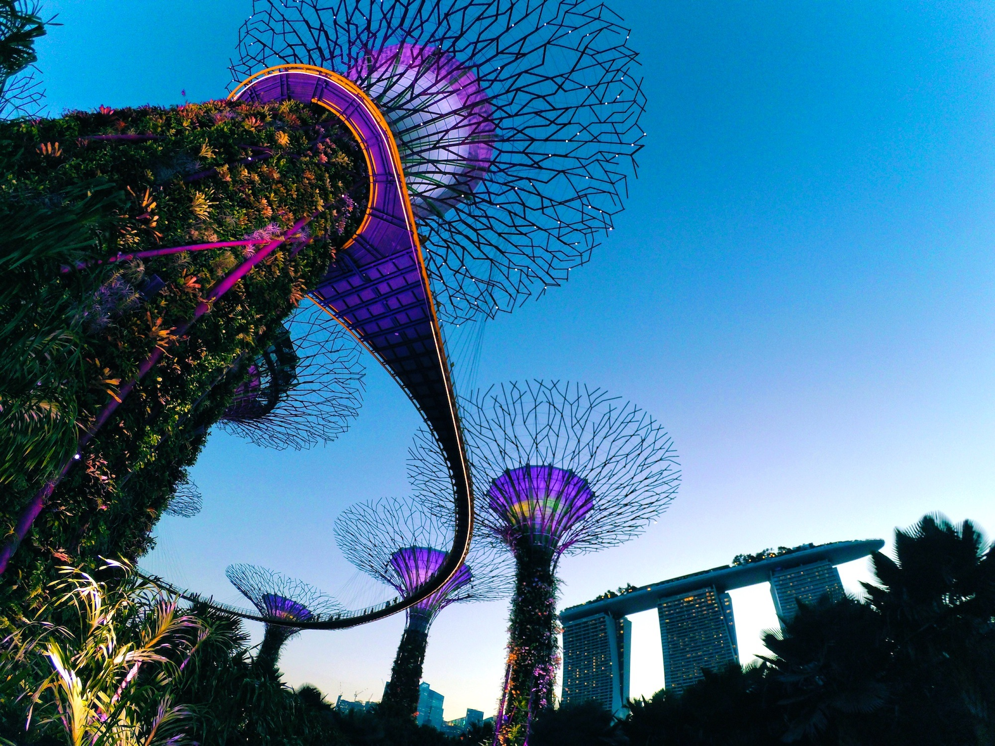 Singapore Gardens by the Bay 2