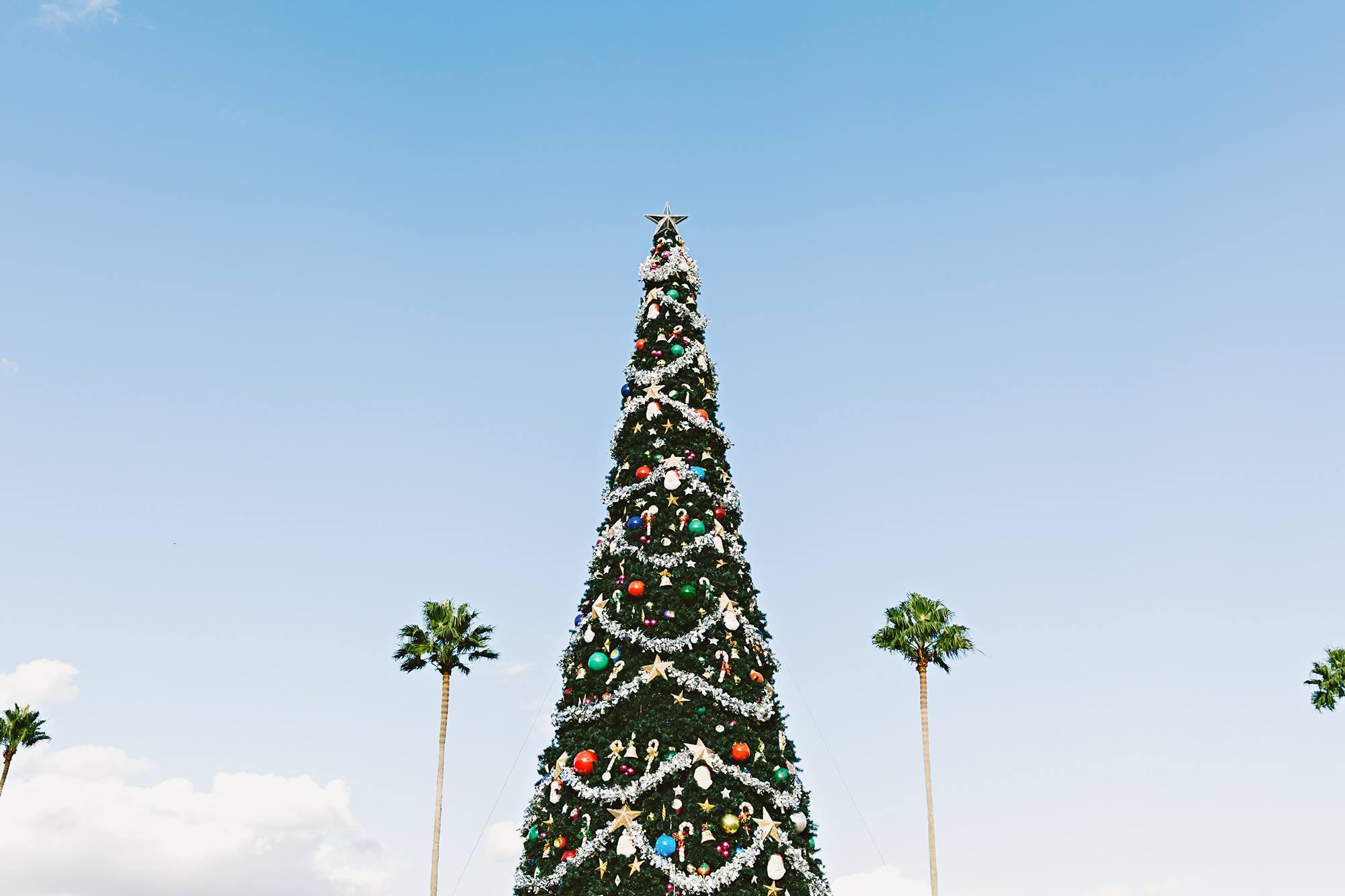 Christmas-Florida
