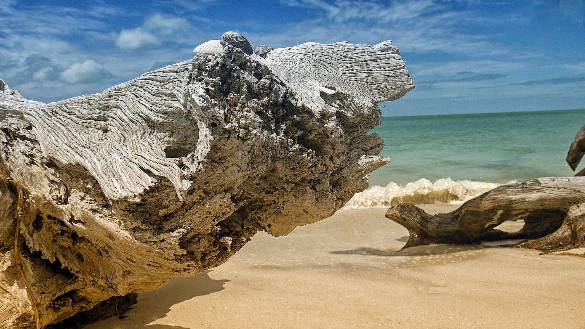 Gulf Coast Rocky Beach
