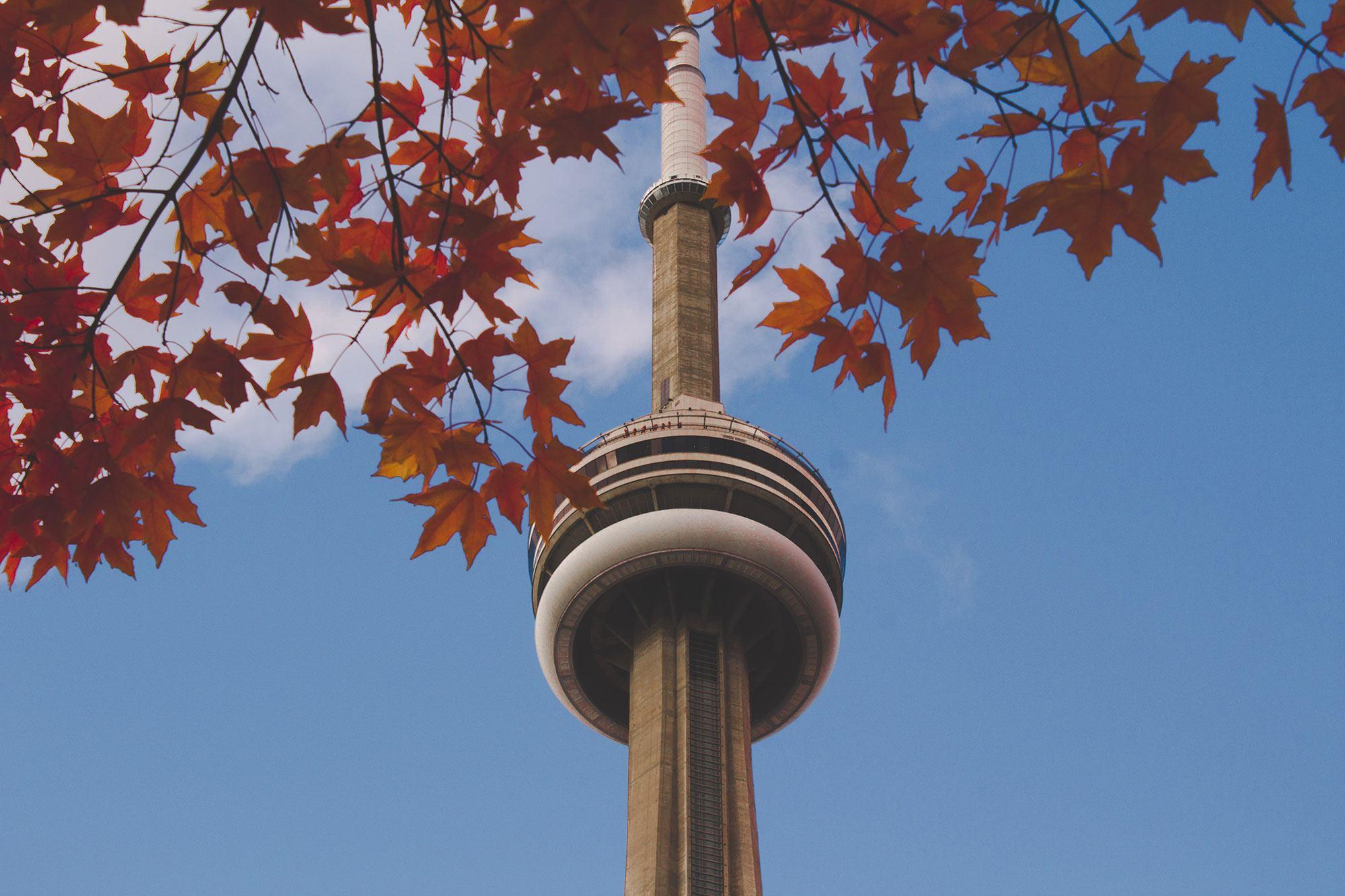 Toronto-Fall