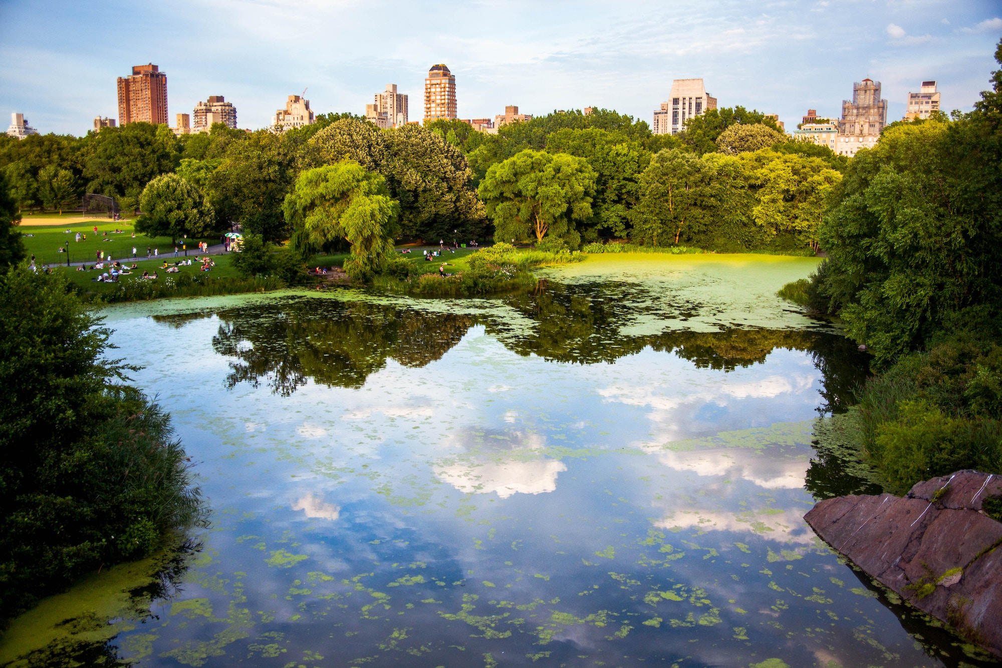 Central Park New York Lake