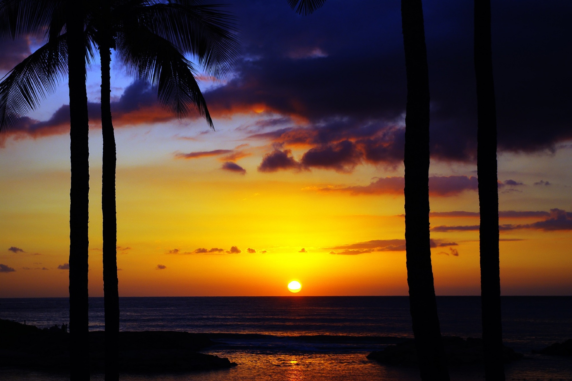 Hawaiian Sunrise