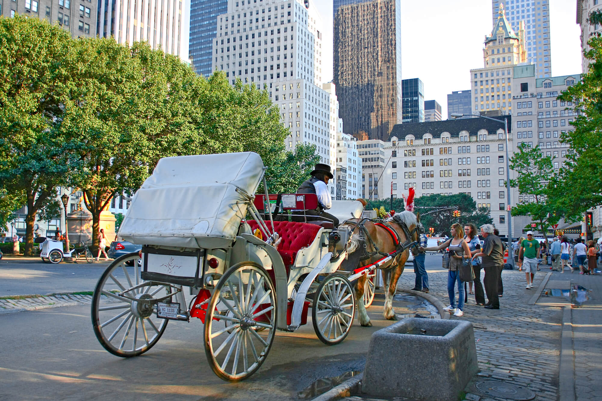 New York Central Park Horse Carriage
