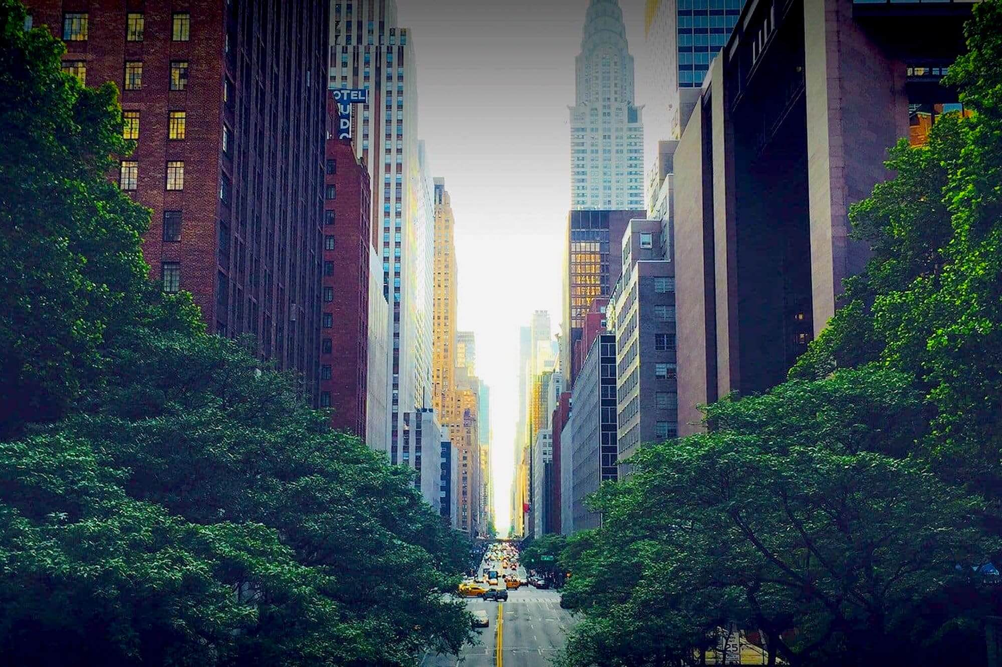 New York Street View