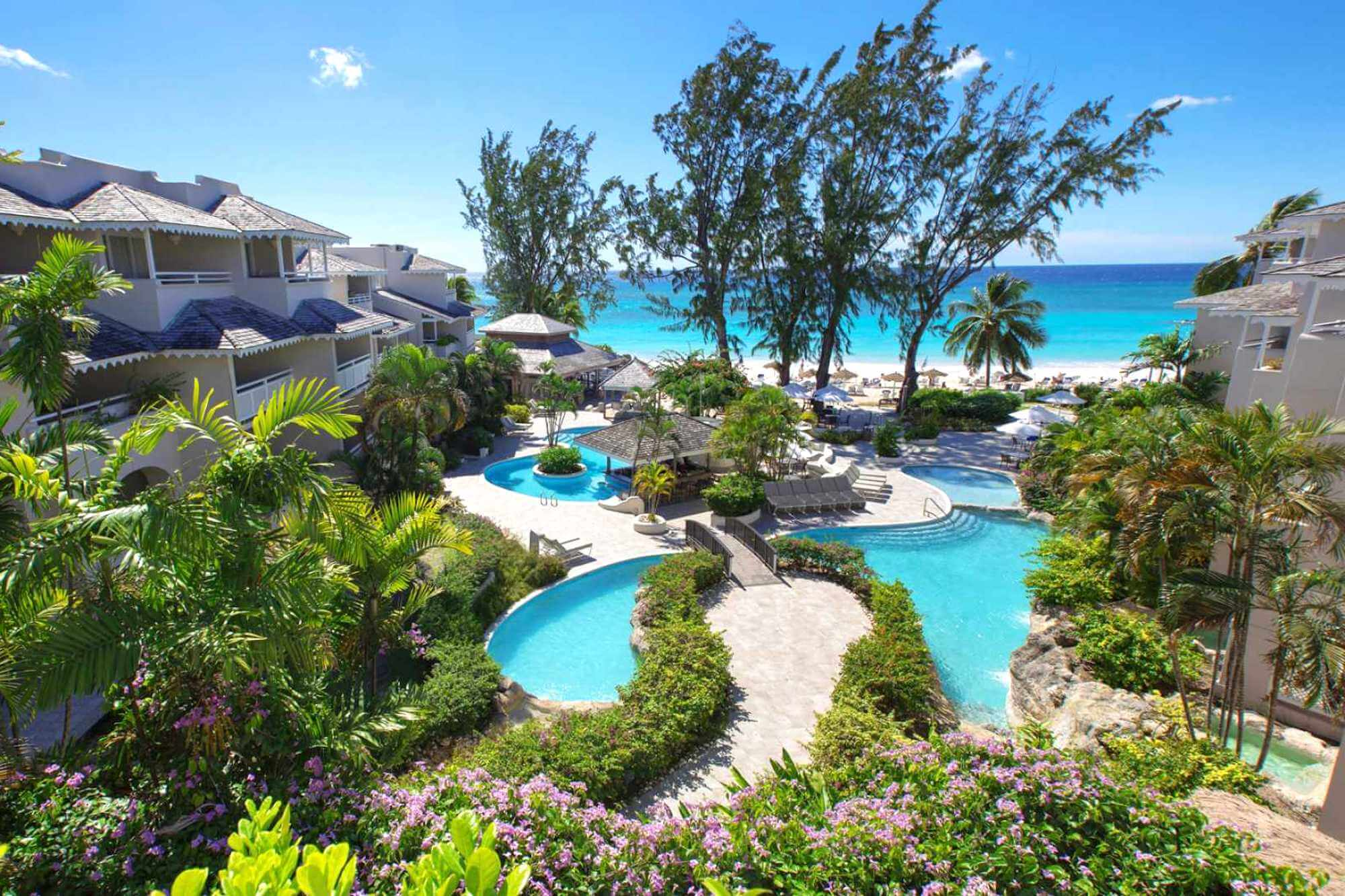 Bougainvillea Barbados Pool