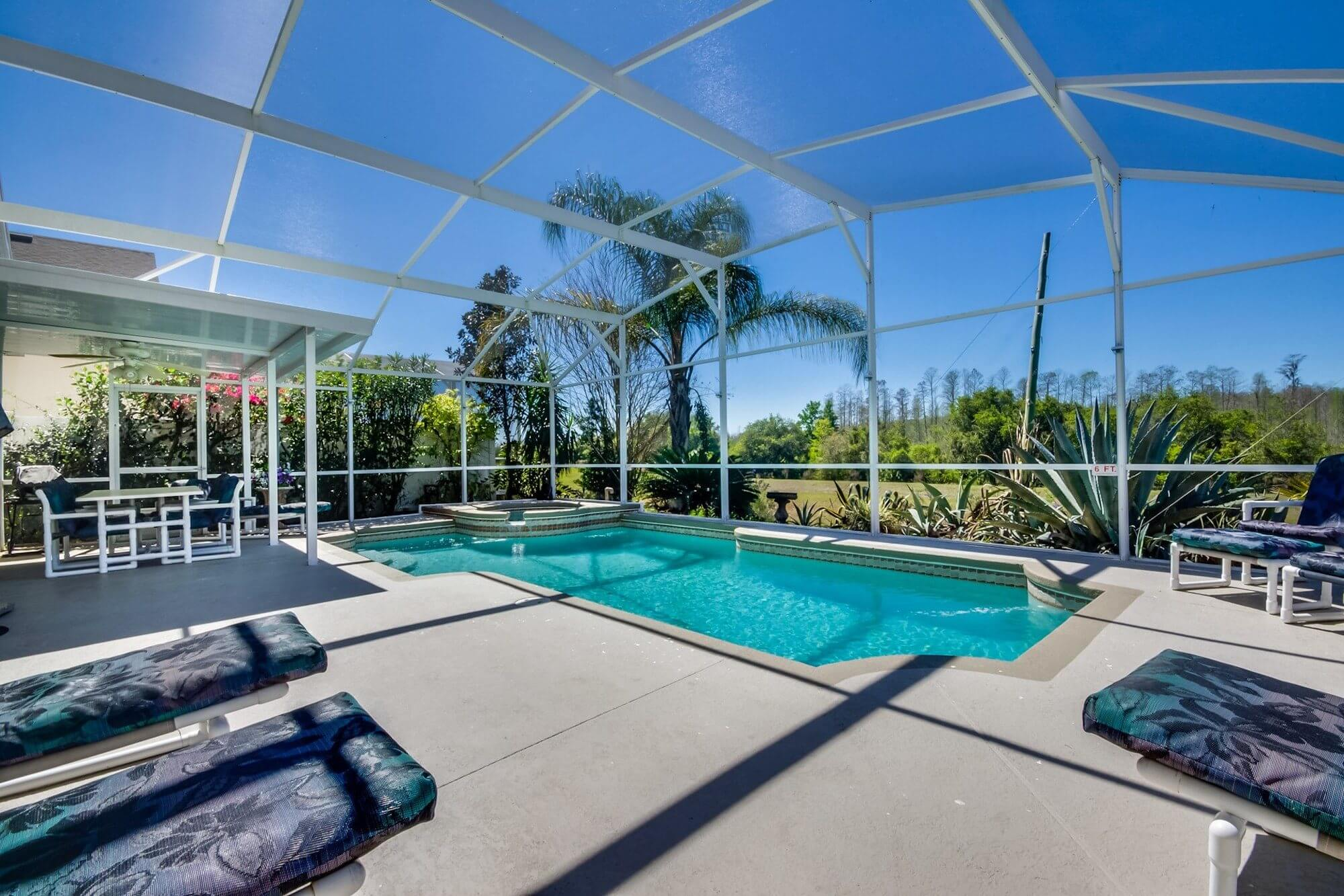 Orlando Villa Pool 1
