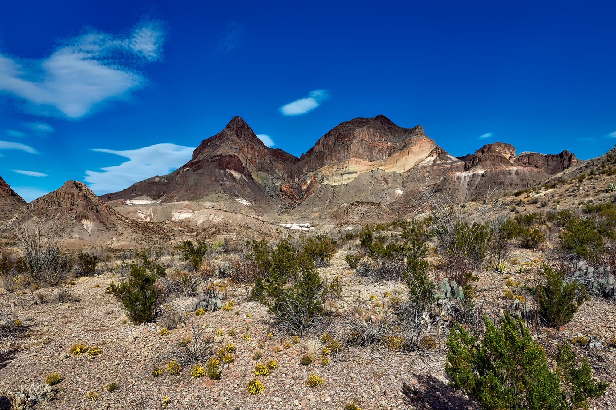 big-bend-national-park-1584082_1920