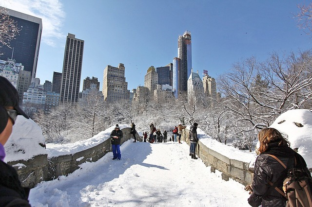 nyc snow bridge