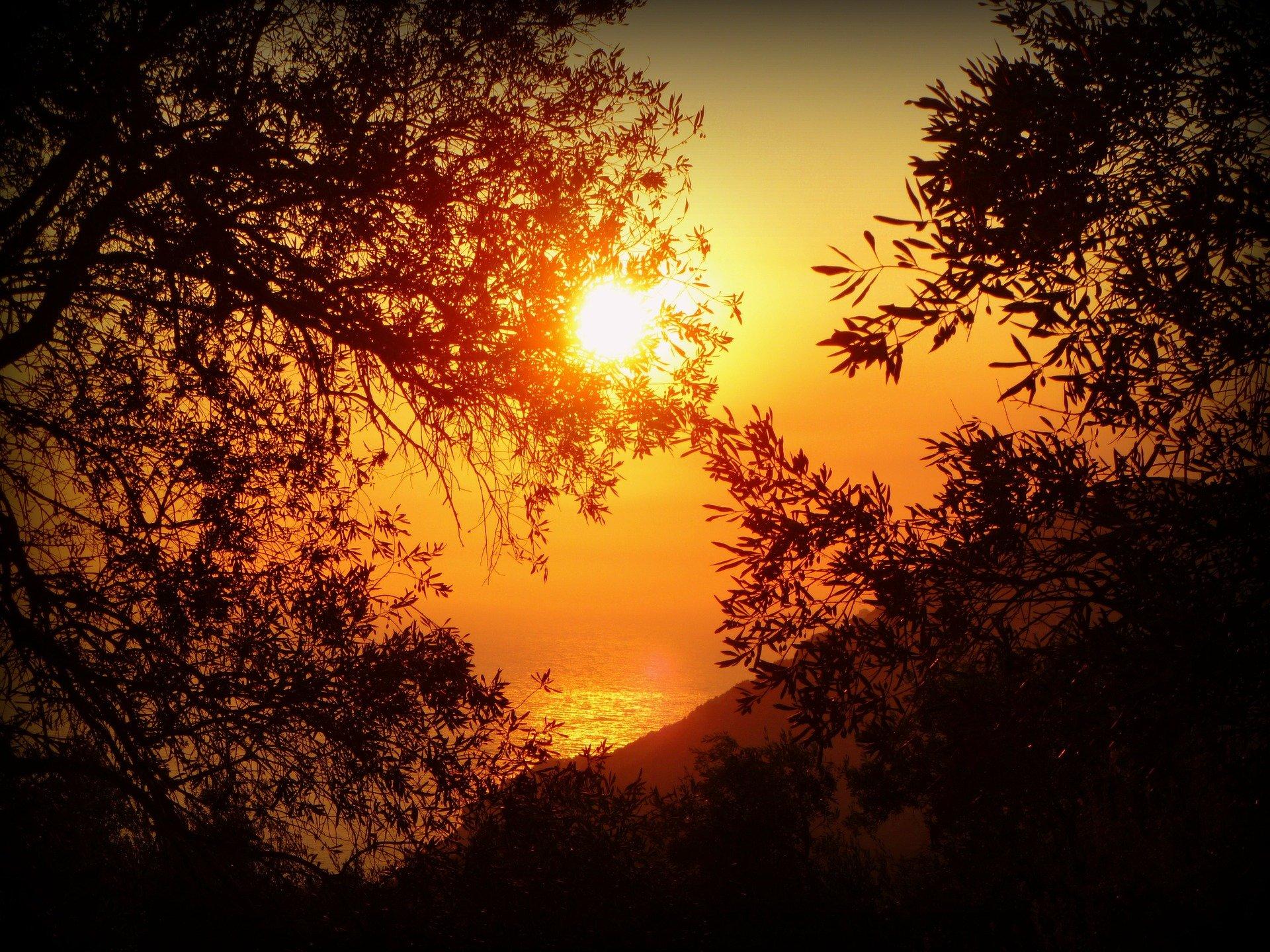 sunset-115448_1920