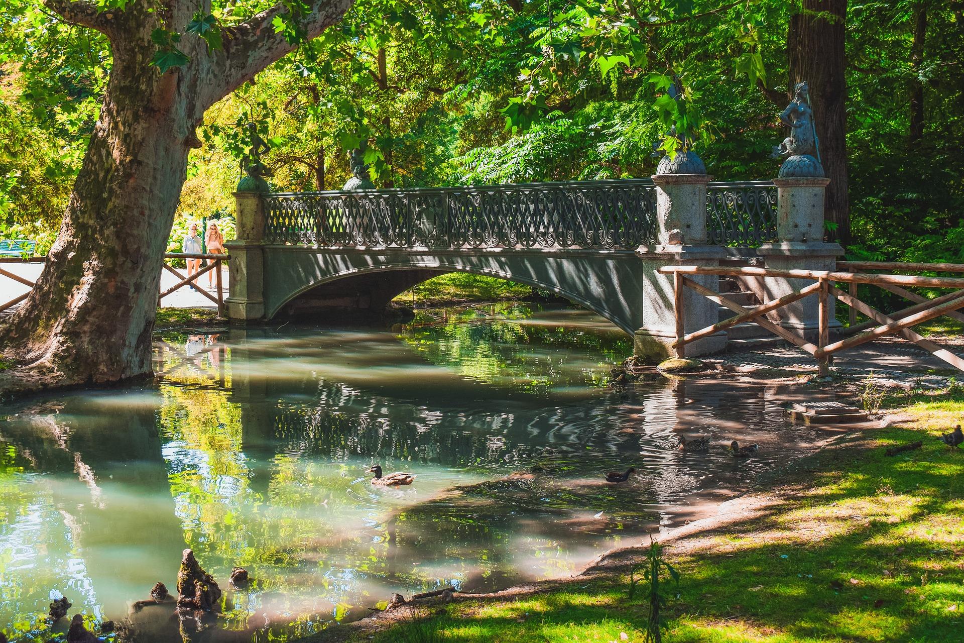 bridge-3573802_1920