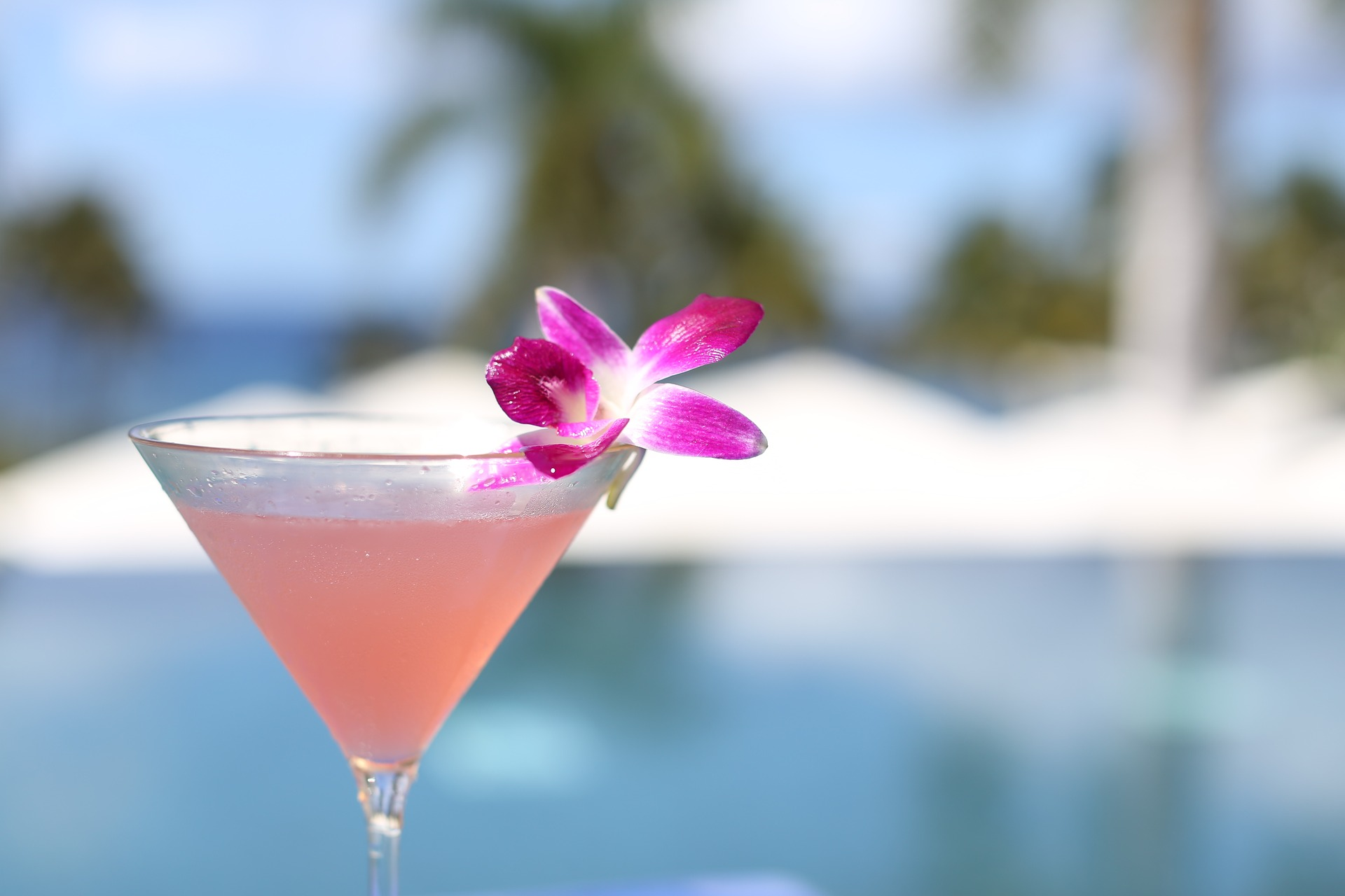 cocktail-2282032_1920