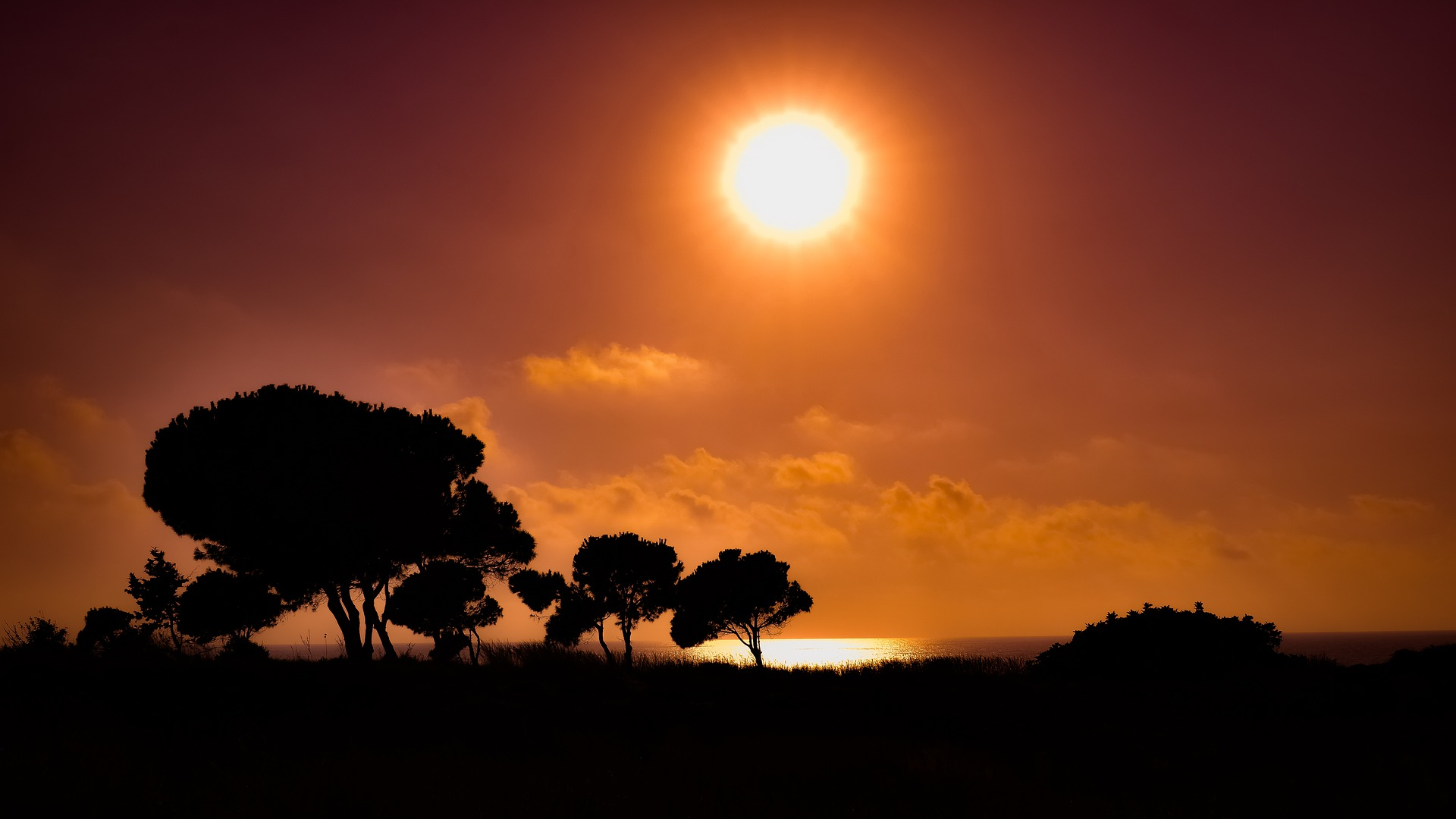 sunset-4437373_1920
