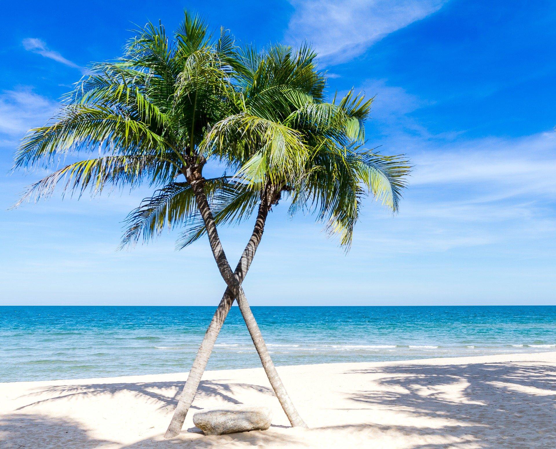 beach-1822544_1920
