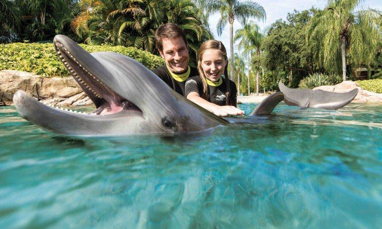 dolphin_lagoon_dc_6